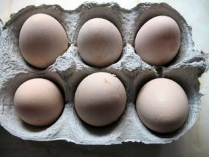 Six Guinea Fowl Eggs