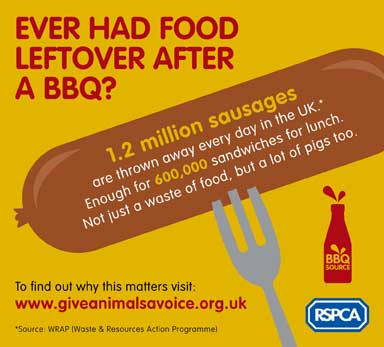 RSPCA BBQ Source Campaign