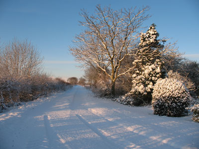 Snow in the lane to the fields December 2009