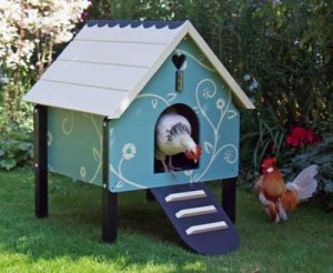 Small Dorking Chicken Coop